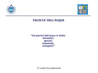"""FACOLTA' DELL'ACQUA """"Usi plurimi dell'acqua in Italia:  domestici,  agricoli,  industriali,"""