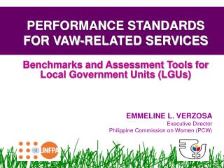 PERFORMANCE STANDARDS FOR VAW-RELATED SERVICES