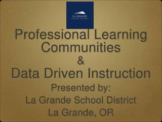 Professional Learning Communities  & Data Driven Instruction