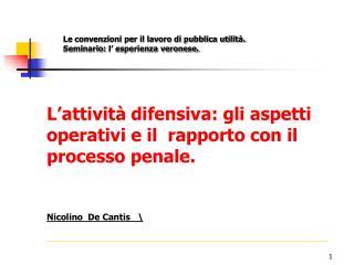 L'attività difensiva: gli aspetti operativi e il  rapporto con il processo penale.