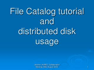File Catalog tutorial and distributed disk usage