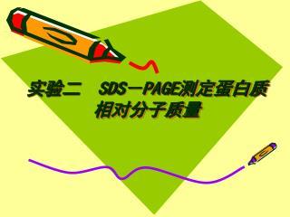 实验二   SDS - PAGE 测定蛋白质                        相对分子质量