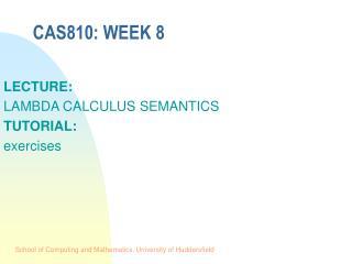 CAS810: WEEK 8