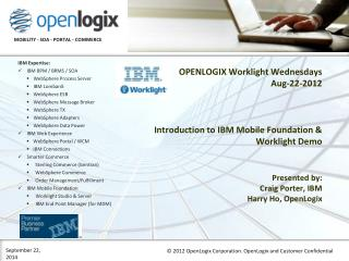 Company Background - OpenLogix