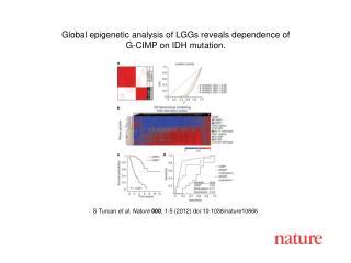 S Turcan  et al .  Nature 000 ,  1 - 5  (2012) doi:10.1038/nature10866