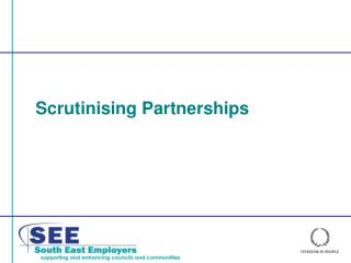 Scrutinising Partnerships