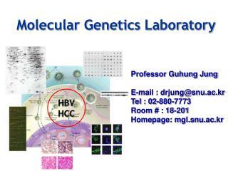 Molecular Genetics Laboratory