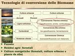 Tecnologie di conversione delle Biomasse