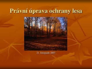 Právní úprava ochrany lesa