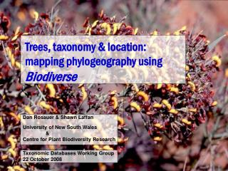 Trees, taxonomy & location: mapping phylogeography using  Biodiverse