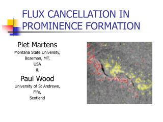 FLUX CANCELLATION IN PROMINENCE FORMATION