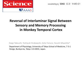 Reversal of  Interlaminar  Signal Between Sensory and  Memory Processing in Monkey Temporal Cortex