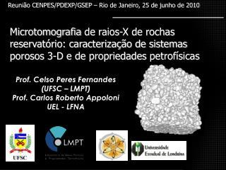 Reunião CENPES/PDEXP/GSEP – Rio de Janeiro, 25 de junho de 2010