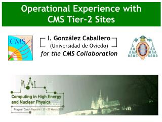 Operational Experience with CMS Tier-2 Sites