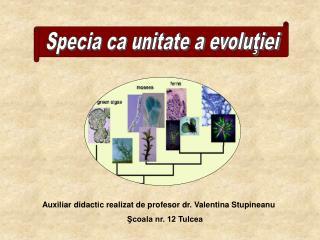 Specia ca unitate a evoluţiei