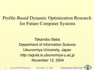 Profile-Based Dynamic Optimization Research  for Future Computer Systems