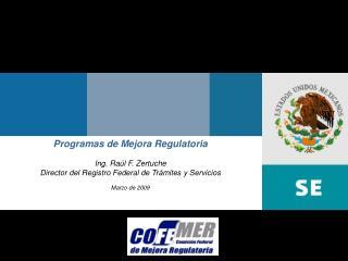 Programas de Mejora Regulatoria Ing. Ra�l F. Zertuche