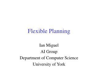 Flexible Planning