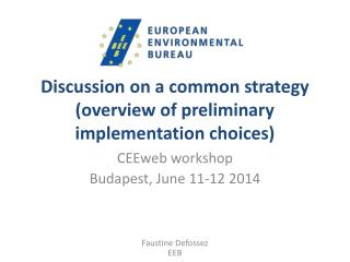 Discussion on a common strategy (overview of preliminary implementation choices)