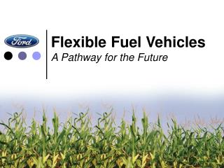 Flexible Fuel Vehicles A Pathway for the Future