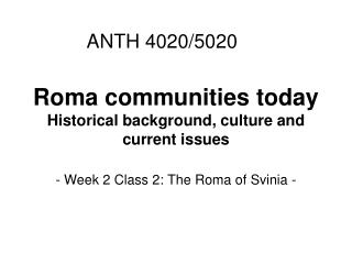 Roma communities today Historical background, culture and current issues