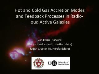 Hot and Cold Gas Accretion Modes and Feedback Processes in Radio-loud Active Galaxies