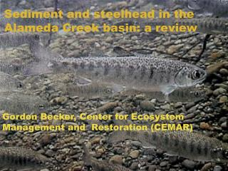 Sediment and steelhead in the Alameda Creek basin: a review