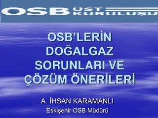 OSB'LERİN DOĞALGAZ SORUNLARI VE ÇÖZÜM ÖNERİLERİ
