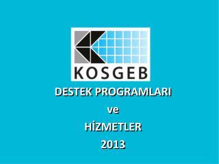 DESTEK PROGRAMLARI  ve  HİZMETLER 2013