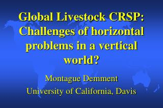 Global Livestock CRSP:  Challenges of horizontal problems in a vertical world?