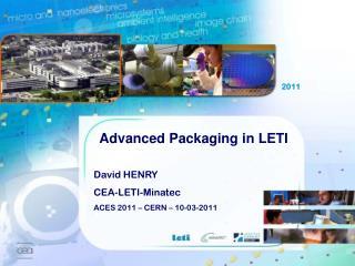 David HENRY CEA-LETI-Minatec ACES 2011 – CERN – 10-03-2011