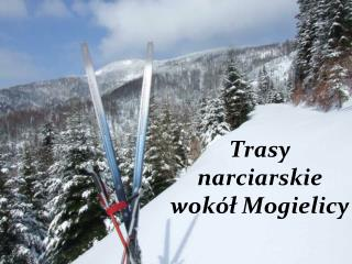Trasy  narciarskie  wokół Mogielicy