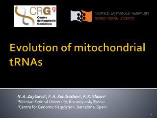 Evolution of mitochondrial  tRNAs