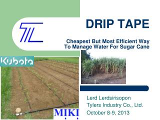 DRIP TAPE Cheapest But Most Efficient Way To Manage Water For Sugar Cane