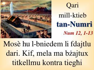 Qari  mill-ktieb  tan- Numri Num 12, 1-13