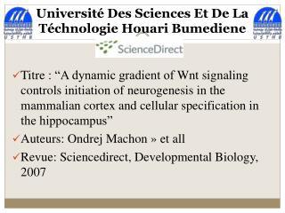 Université Des Sciences Et De La  Téchnologie  Houari  Bumediene