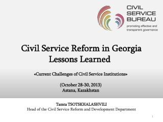 Civil Service Reform in Georgia Lessons Learned