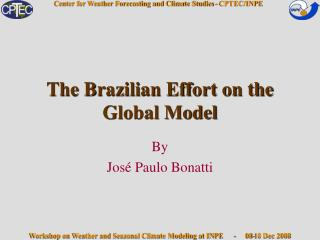 The Brazilian Effort on the Global Model