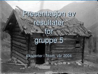 Presentasjon av resultater for  gruppe 5 Eksperter i Team, vår 2004