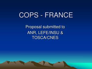 COPS - FRANCE