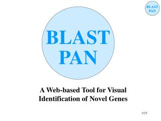 A Web-based Tool for Visual Identification of Novel Genes