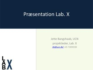 Præsentation Lab. X
