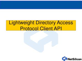 Lightweight Directory Access Protocol Client API