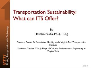 Transportation Sustainability: What can ITS Offer?