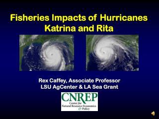 Fisheries Impacts of Hurricanes Katrina and Rita