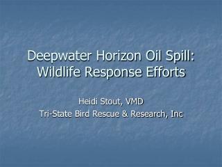 Deepwater Horizon Oil Spill: Wildlife Response Efforts