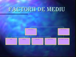 FACTORII DE MEDIU
