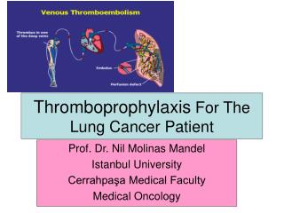 Thromboprophylaxis  For The Lung Cancer Patient