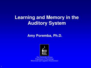 Learning and Memory in the Auditory System