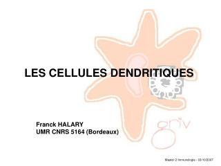 LES CELLULES DENDRITIQUES        Franck HALARY        UMR CNRS 5164 (Bordeaux)